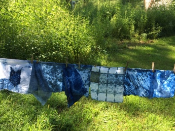 Indigo Shibori fabric, drying at WSW 2015