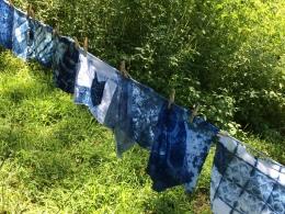 More Indigo Shibori fabric, drying at WSW 2015